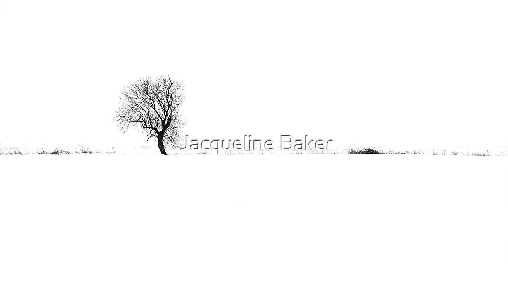 Unfrequented by Jacqueline Baker