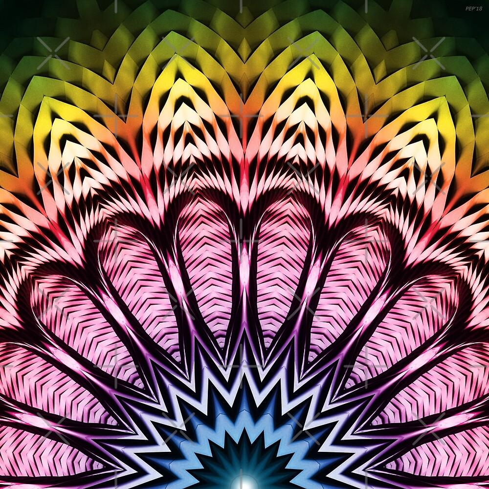 Spectrum Sun Flower by Phil Perkins