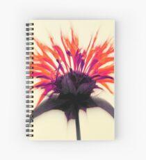 Limited Edition ~ Queen Monarda Spiral Notebook