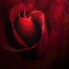 Valentine by Tama Blough