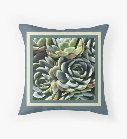 World Of The Succulent Floor Pillow