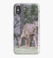 Okauchee Lake Deer iPhone Case/Skin