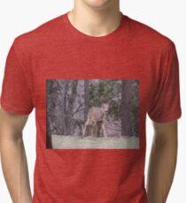 Okauchee Lake Deer Tri-blend T-Shirt