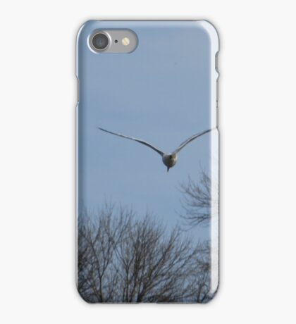 Seagull Over Trees iPhone Case/Skin