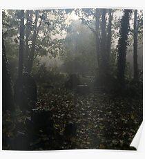 Misty graveyard Poster