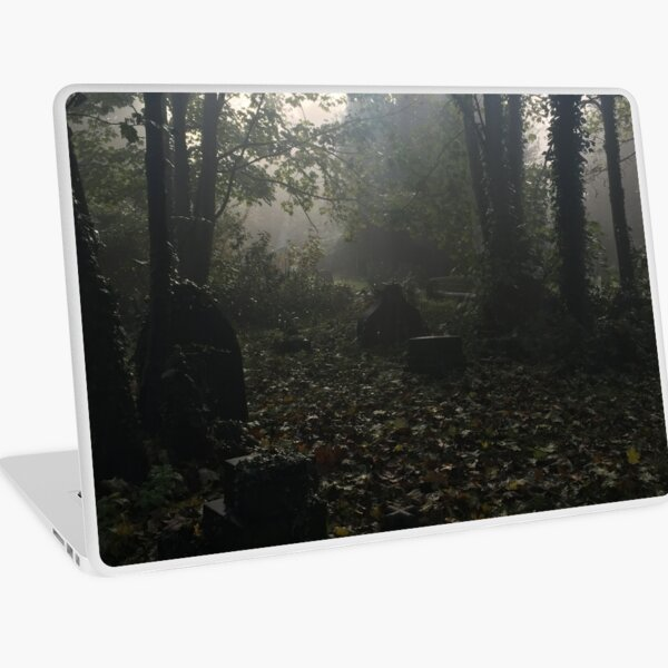 Misty graveyard Laptop Skin