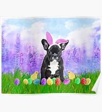French Bulldog with Easter Eggs Bunny Chicks Poster