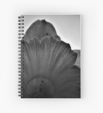 daffodil in black and white Spiral Notebook