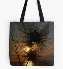 Tumbleweed, Cable Beach, Broome,  Western Australia Tote Bag