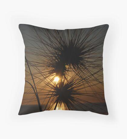 Tumbleweed, Cable Beach, Broome,  Western Australia Throw Pillow