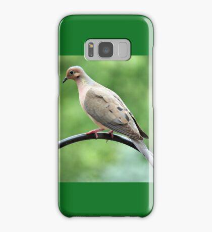 Morning Mourning Dove Samsung Galaxy Case/Skin