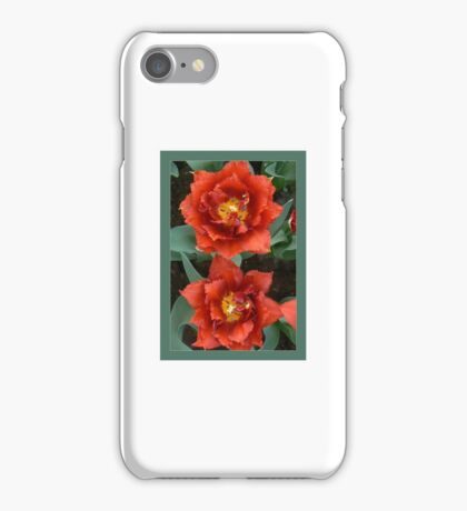 double tulips-redto greenbg!:P and green iPhone Case/Skin