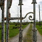 Pat-Joe's gate by Martina Fagan
