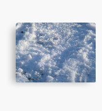 Ice Age - Snow Up Close Canvas Print