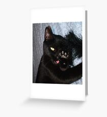 After a Visit to the Vet. Greeting Card