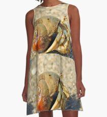Hermit Crab A-Line Dress