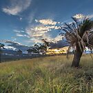 Sandstone Park - Caranarvon Gorge - Queensland by Frank Moroni