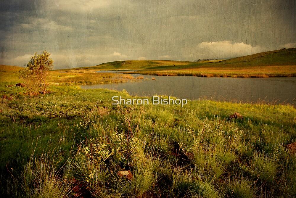 Drakensberg dam by Sharon Bishop