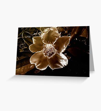 """Fallen Silk"" Greeting Card"