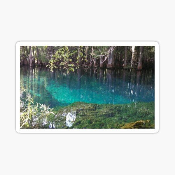 Manatee Springs Beautiful Natural Florida Sticker