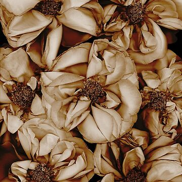 Taffeta Roses Dark Floral by LindasPhotoArt