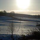 Snow Scene by dougie1