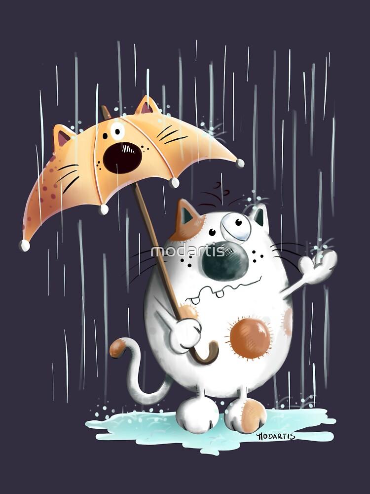 Cat And Rainy Day  by modartis