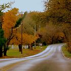 Country Road Series - 1         ^ by ctheworld