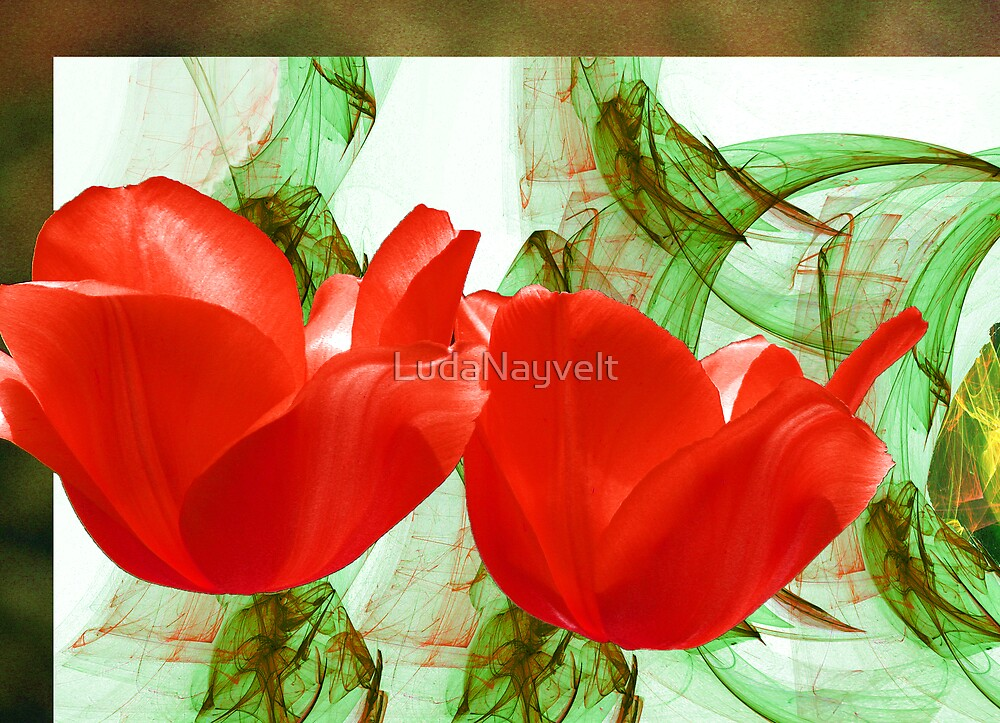 Red for Valentine's  by LudaNayvelt