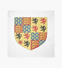Hainault coat of arms, Coat of arms, arms, crest, blazon, cognizance, childrensfun, purim, costume Scarf