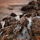 Rocky Cape National Park by Garth Smith