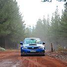 Into The Woods by Jarrod Sierociak