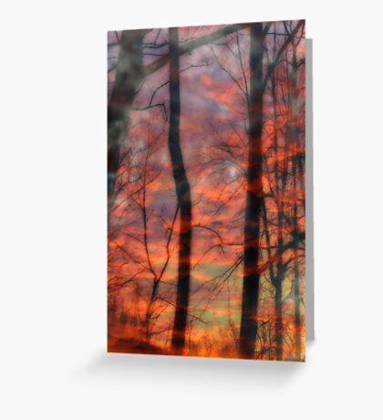 Dusk Dreams Greeting Card