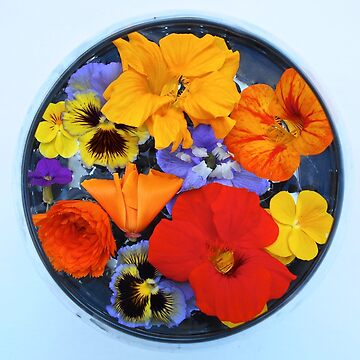 Bowl full of purple, yellow, and orange flowers floating on water by GoddessChrissy