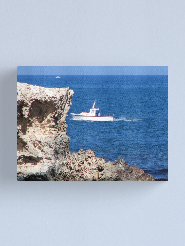 Alternate view of Look Out! Canvas Print
