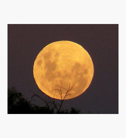 Moon in Aquarius 1 Photographic Print