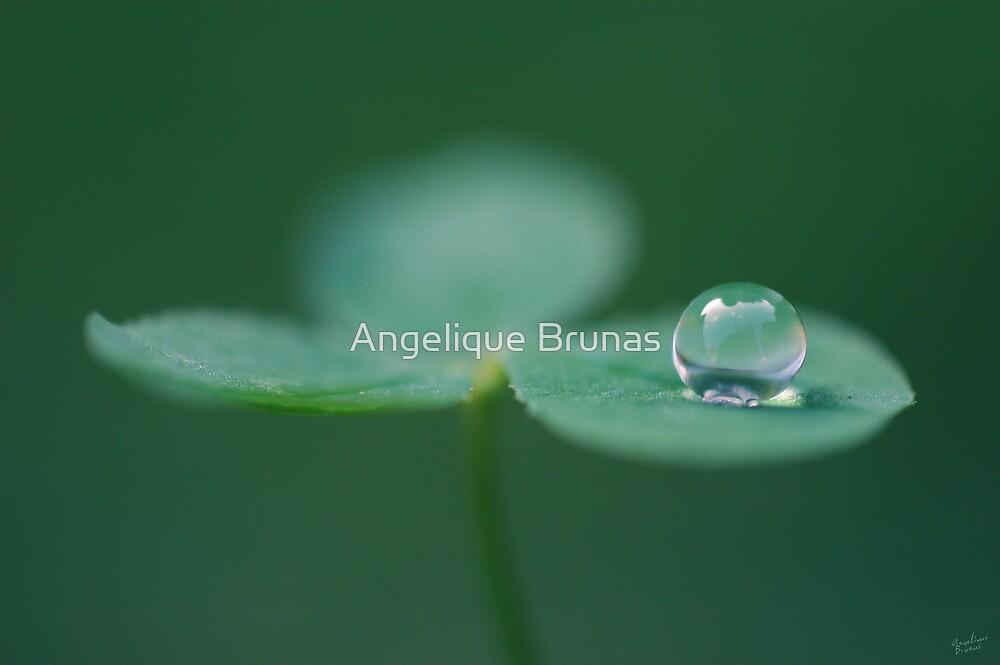 Envy by Angelique Brunas