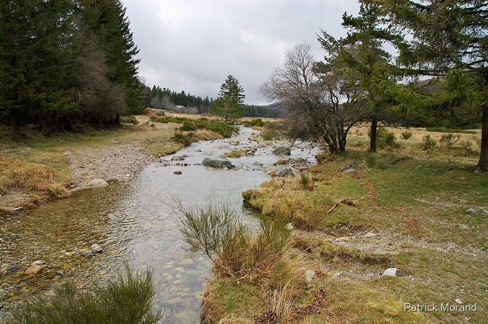 Bonheur river - Cevennes National Park by Patrick Morand