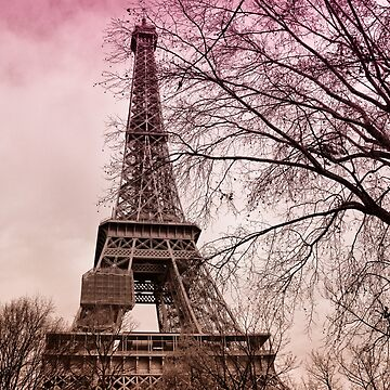 Eiffel tower in city of Paris, France by FlatLandPrints