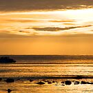 Golden Sea by bubblebat