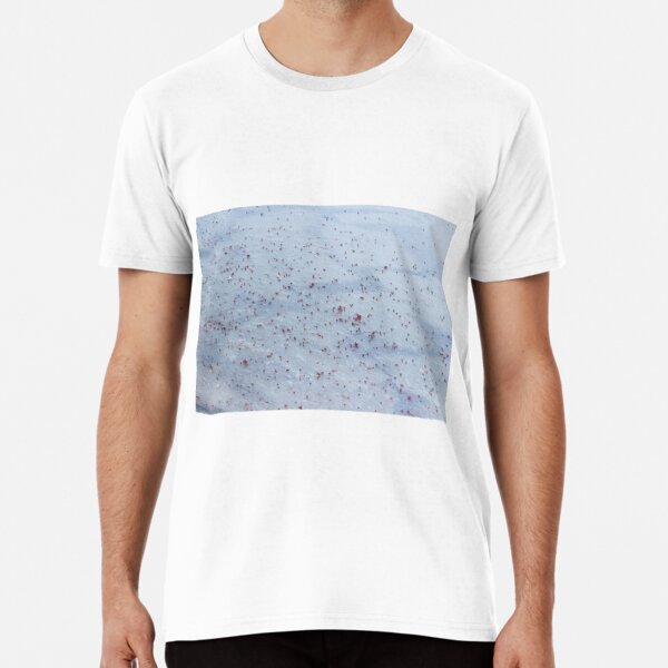 winter, ashberry on the snow Premium T-Shirt