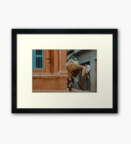 Long-Eared Friendly Face Framed Print