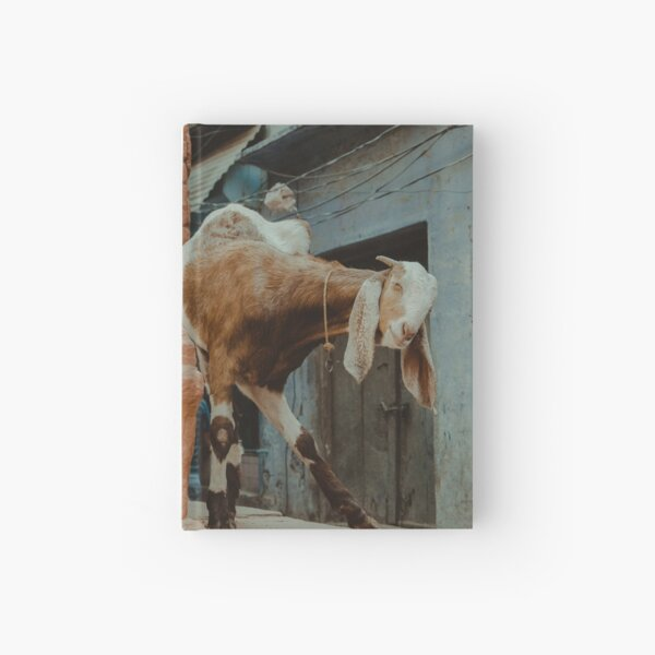Long-Eared Friendly Face Hardcover Journal
