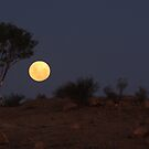 Outback Moon by Gareth Bowell