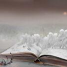 Winter Story by Igor Zenin