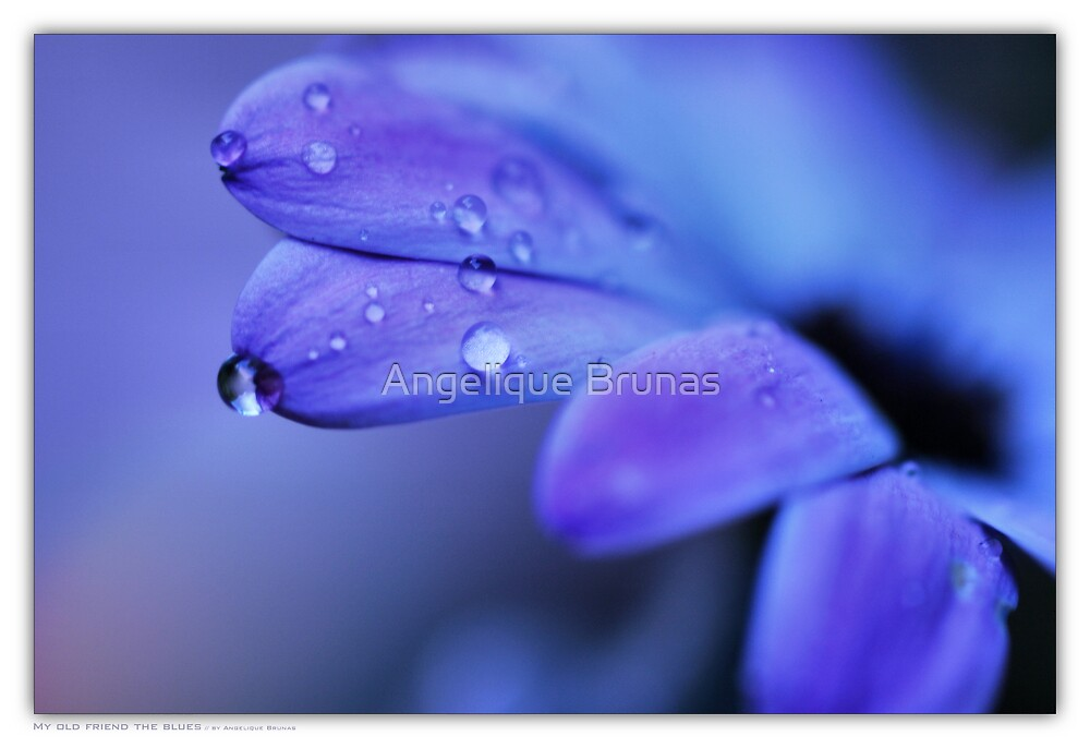 My old friend the blues... by Angelique Brunas