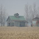 falling down barn and rusty silo by Dave & Trena Puckett