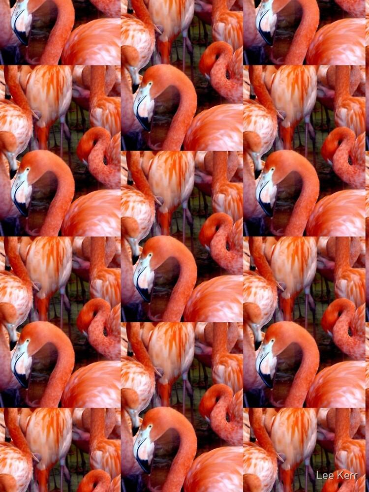 Pretty Flamingo by leekier