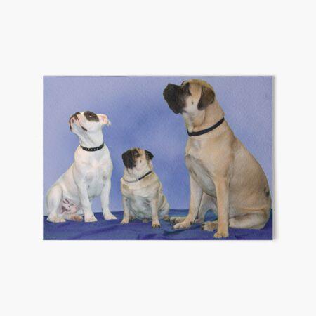 Harry, George & Freda Art Board Print