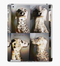Pinhole 1. iPad Case/Skin